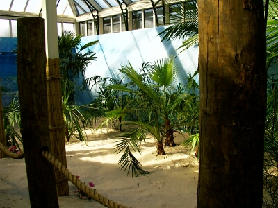 Tropical World